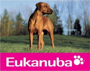 Eukanuba: Táplálás és gondozás és az etetés alapjai